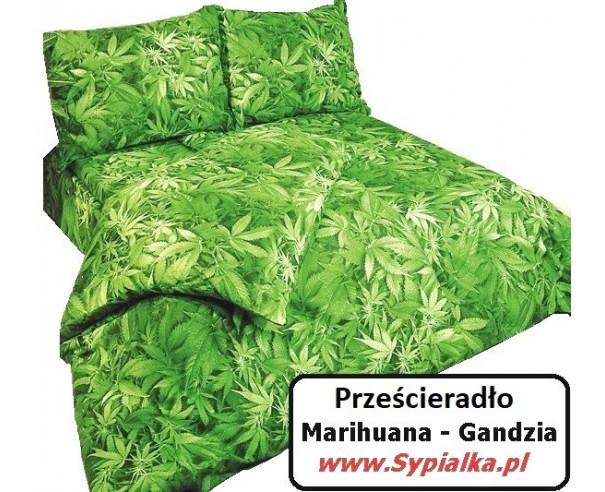Prześcieradło Gandzia 160x200 zielone