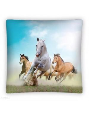 Poszewka błękitna Konie 3D...